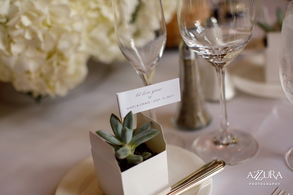 succulents_as_wedding_favors