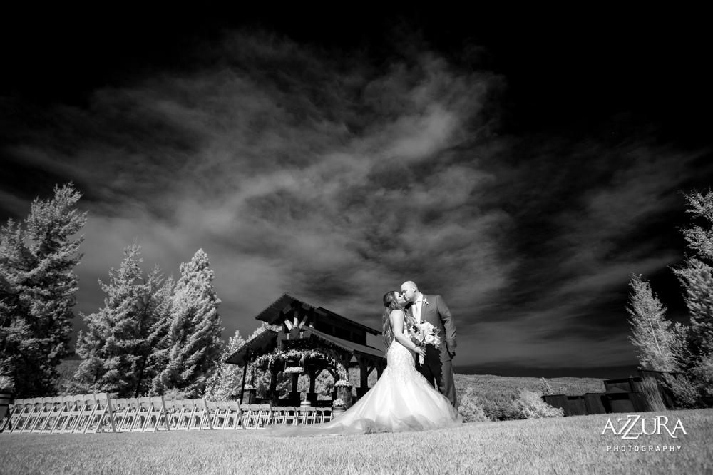dramatic-black-and-white-bridal-portrait