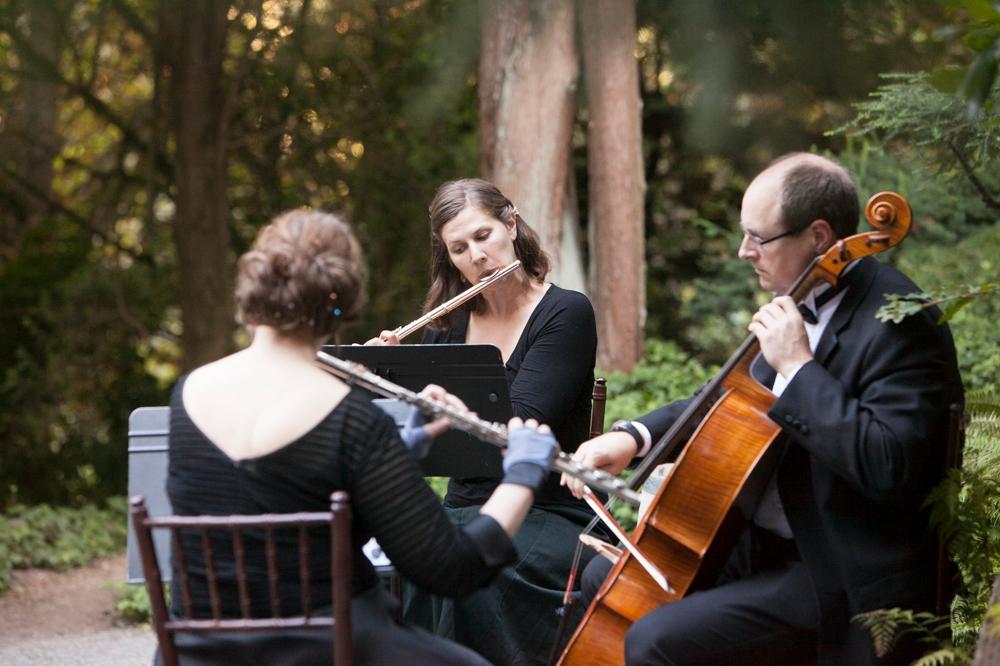 three-piece-orchestra-wedding-ceremony
