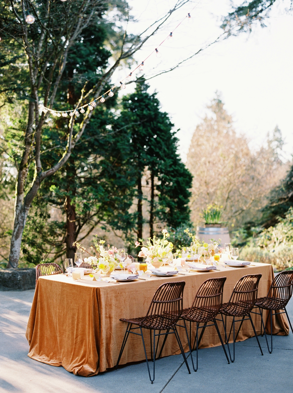 table-set-in-winery-setting
