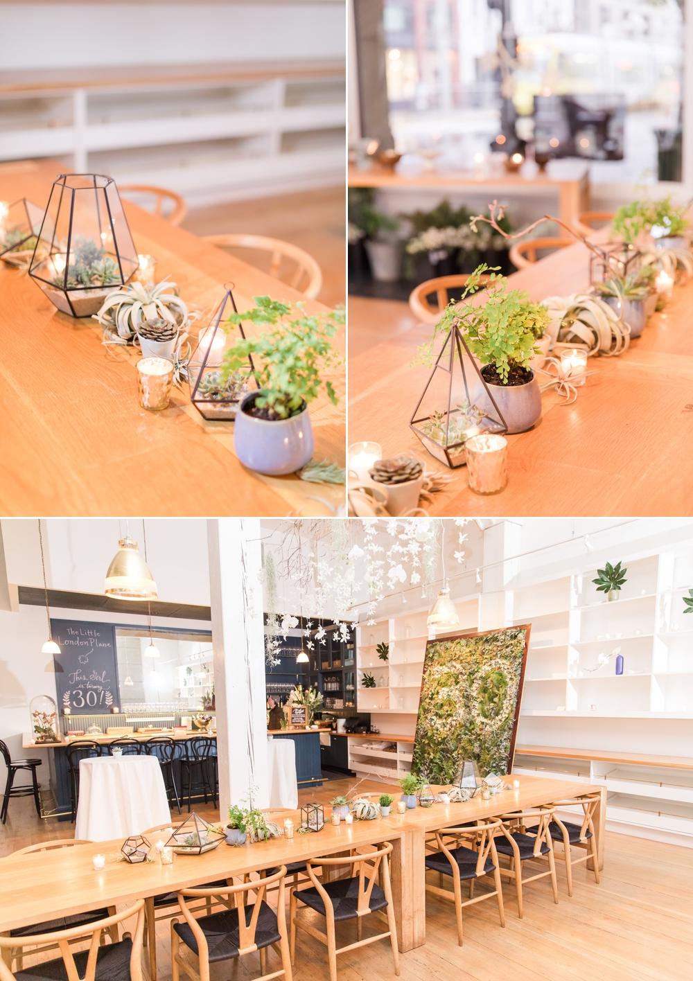 birthday-party-decor-setup-succulents